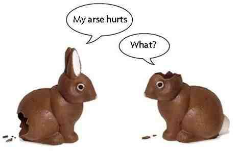 rabbiteaster
